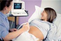 Можно ли семечки беременным на ранних сроках
