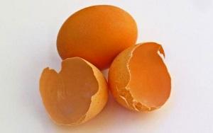 Лечение диатеза яичной скорлупой