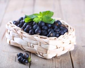 Химический состав черной смородины