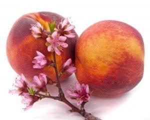 Персики при беременности: польза и вред