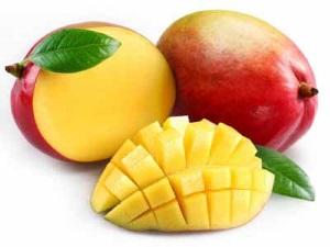 Общие сведения о манго