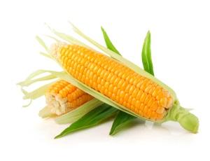Кукуруза при беременности: показания и противопоказания