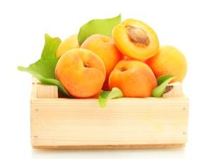 Общие сведения об абрикосах