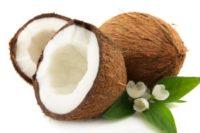 Кокос для беременных: польза и вред