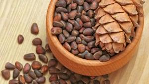 Общие сведения о кедровых орехах