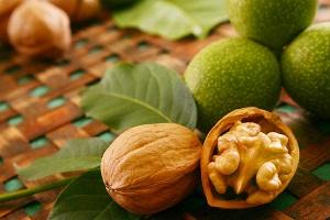 Вредные свойства грецкого ореха для беременных