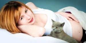 Что нужно знать о токсоплазмозе при беременности