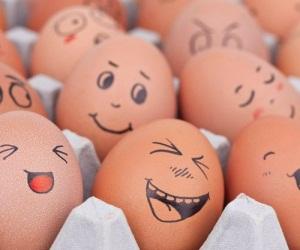 Яйца при беременности: меры предосторожности