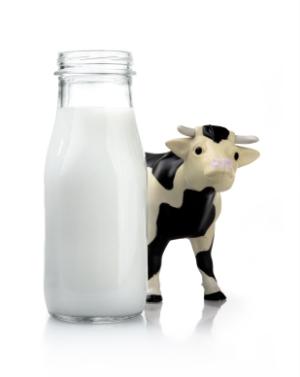Общие сведения о молоке