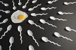 Четверо суток для зачатия ребенка