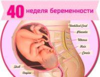 40 неделя беременности - что происходит