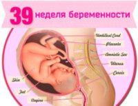 39 неделя беременности: что происходит