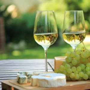 Полезные и вредные свойства белого вина при беременности