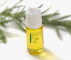 Масло чайного дерева при беременности: польза и вред