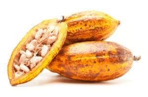 Общие сведения о масле какао