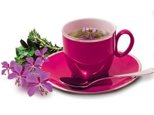 Иван-чай при беременности: меры предосторожности