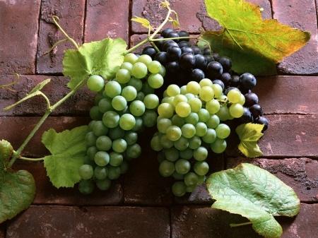 Виноград при беременности - польза и вред