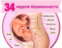 34 неделя беременности: что происходит