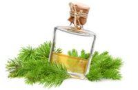 Пихтовое масло при беременности: польза и вред